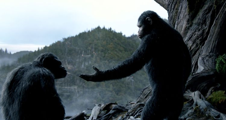 Toby Kebbell (left) as Koba and Andy Serkis as Caesar in Dawn of the Planet of the Apes