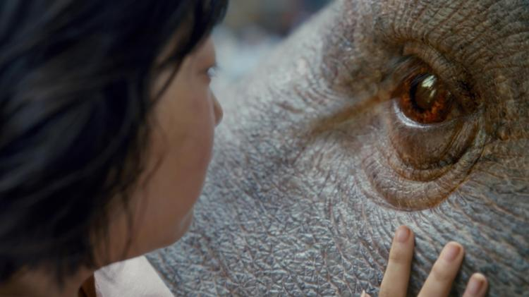VIDA FILMS AUG 2017 Okja 2